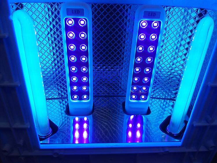 LED лампа (1)